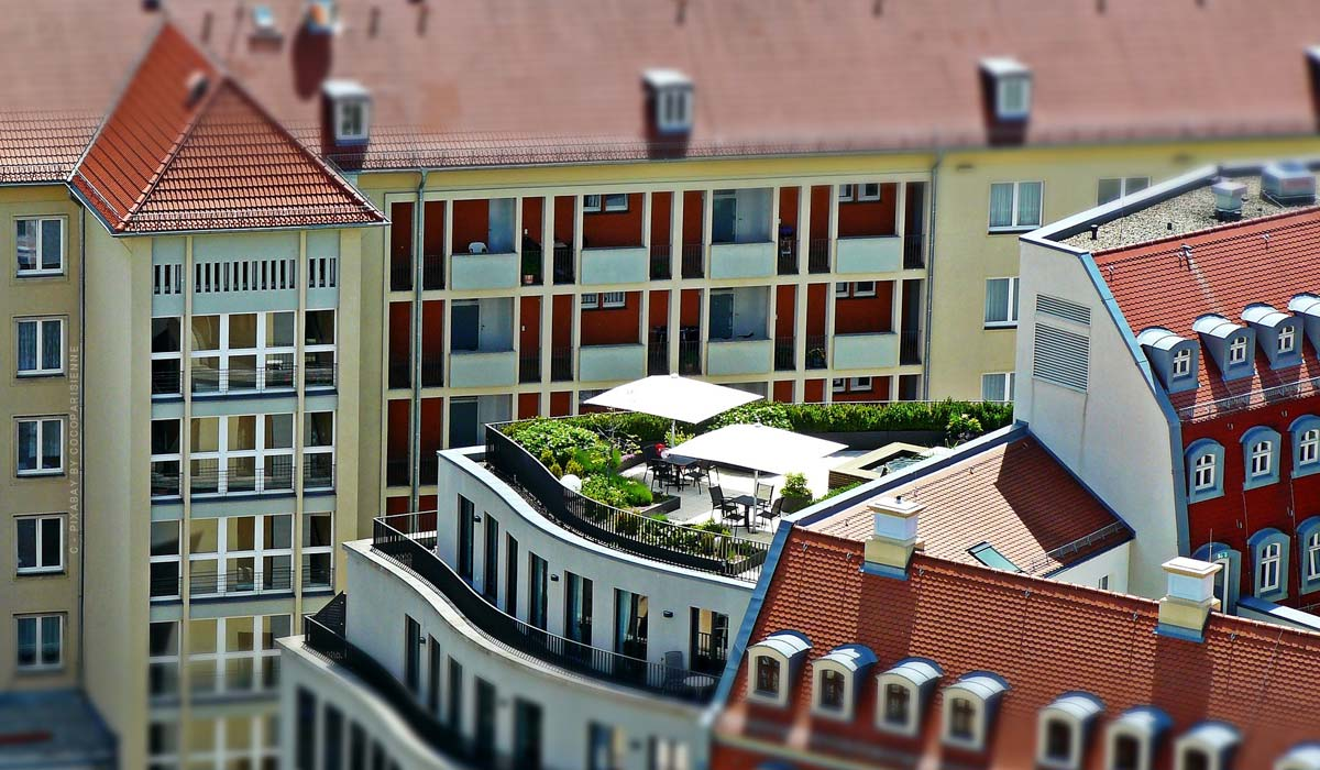 Roof terrace - Building, greening & in English